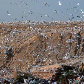 Όχι άλλα σκουπίδια στη Δυτική Αττική - Ηλεκτρονική συλλογή υπογραφών